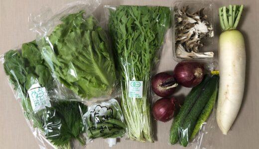 【宅配野菜レビュー】坂ノ途中のお野菜セットを注文してみました!【今なら送料3回無料】