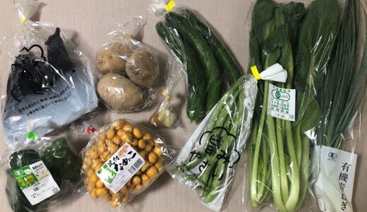 【宅配野菜レビュー】8月・坂ノ途中のお野菜セットが届きました!【今なら送料3回無料】